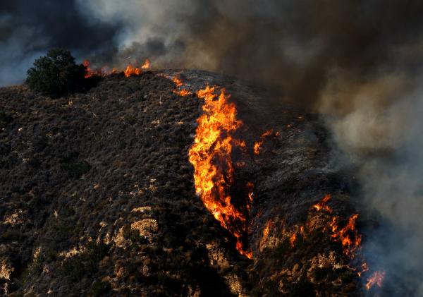 A steep hillside burns in a wildfire