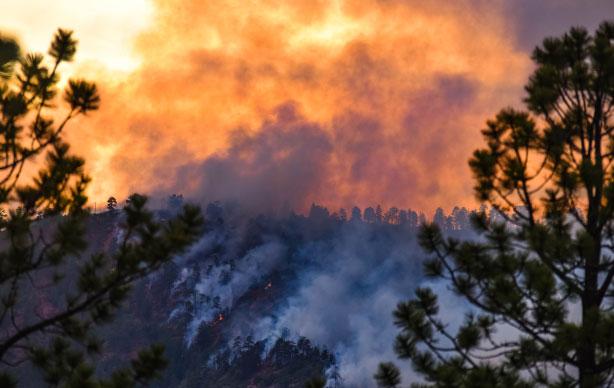 wildfire-PR