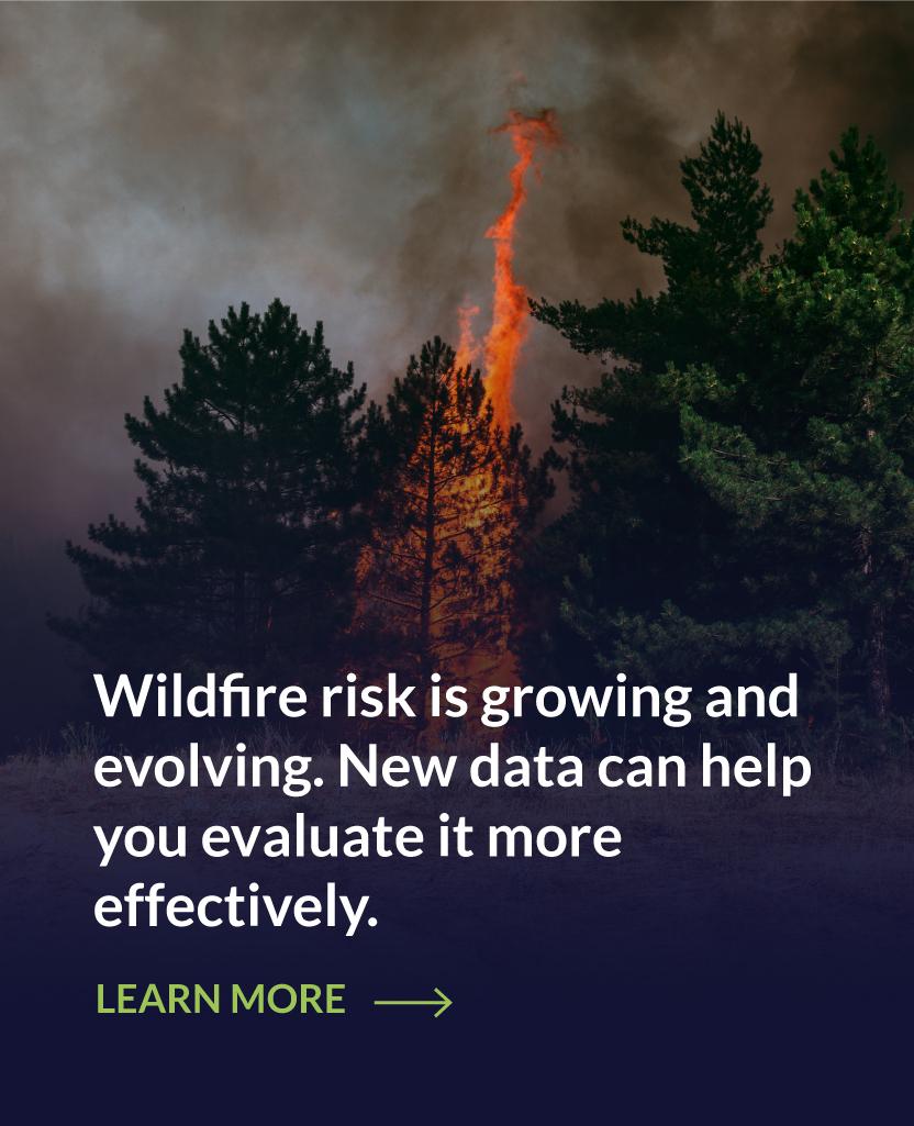 IE-wildfire-cta